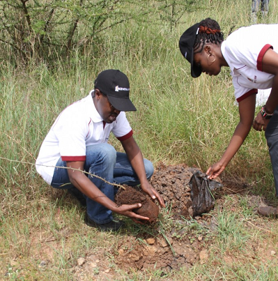 Kenya Law Ag. CEO Mr. Long'et Terer plants a tree at the Nairobi National Park on June 26th 2015 as part of the Kenya Law CSR programme. Looking on is a Kenya Law staff Ms. Yvonne Kirina .